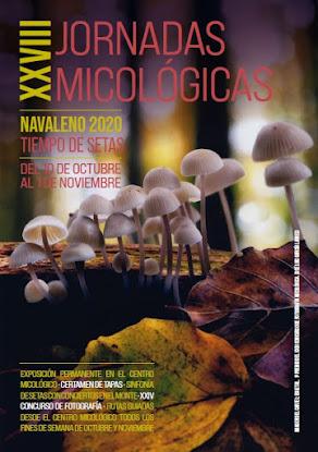 XXVIII Jornadas Micológicas - Cartel 2020