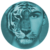 Tiger Cam - Tiger Face Morphing App