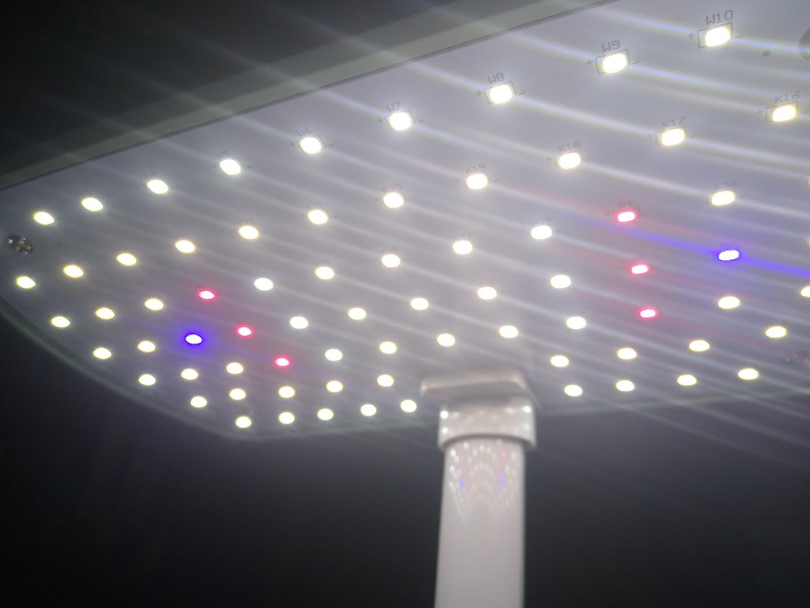 AeroGarden Harvest grow lights picture