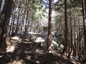 岩のピーク