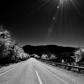 Long road ahead by Pantelis Orfanos - Landscapes Travel ( moon, travelling, black and white, trees, road, sun, b and w, landscape, b&w, monotone, mono-tone )