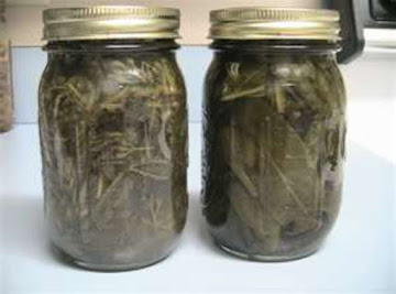 How To Make Your Own Tinctures Recipe