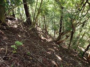 結構な急斜面(下を見る)