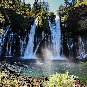 Burney Falls, CA by Sean Markus - Landscapes Waterscapes ( northern california, mt. shasta region, california state park, mcarthur-burney falls state park, burney falls, california, water fall,  )