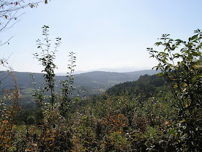 Photo: B9240073 Harbutowice - gora Babica