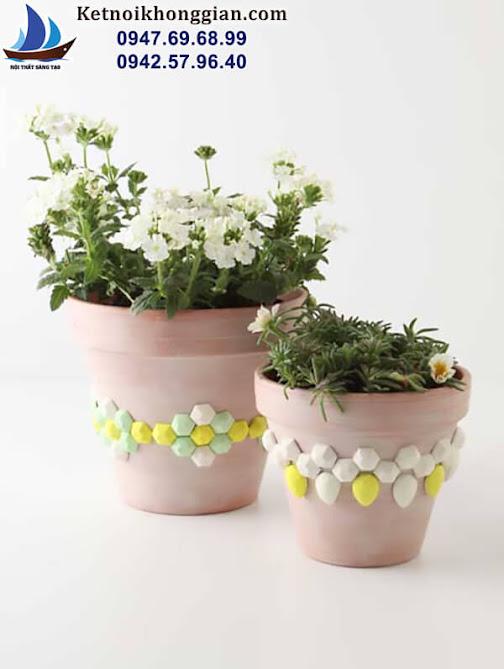 trang trí chậu hoa