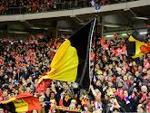 """""""Coupe du monde de la honte"""": l'appel au boycott du Mondial 2022 des Belgium Fans"""