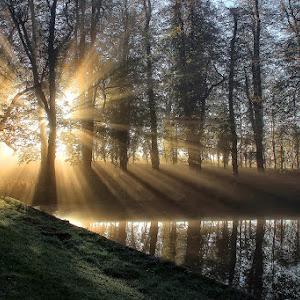 A blast of early Morning Sun.jpg