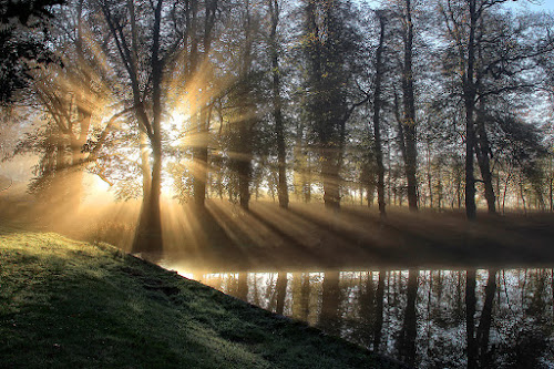 A Blast of Sunlight by Martin Crush - Landscapes Sunsets & Sunrises ( dramatic landscapes, crush photography, ponds, crush studio, crush, lakes, reflections, sunrise, sunlight )
