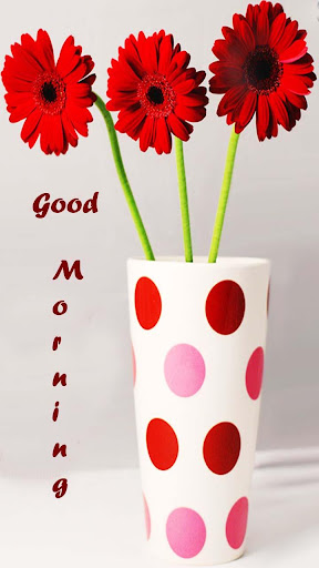 Good Morning night Wishes