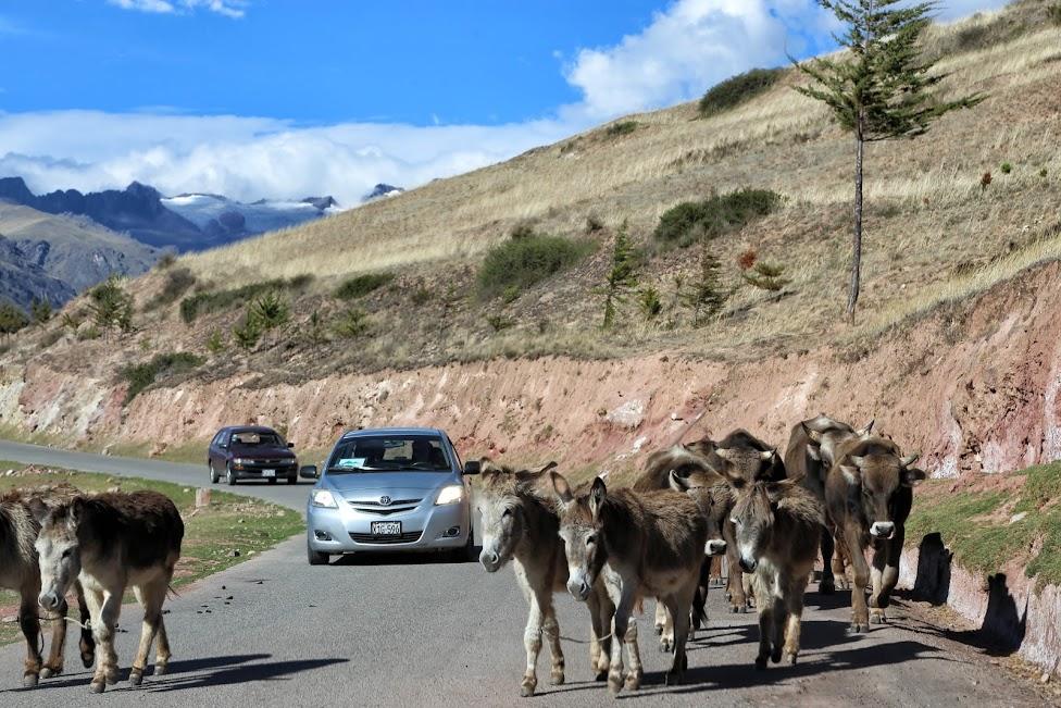 Peru, w drodze, peruwiańskie drogi