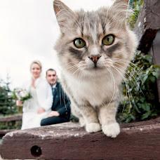 Wedding photographer Andrey Gacko (Andronick). Photo of 08.11.2018