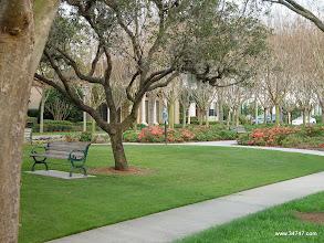 Photo: Longmeadow Park, Celebration Village, Celebration, FL