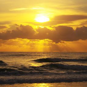 Sunrise by Carolyn Lawson - Landscapes Sunsets & Sunrises (  )