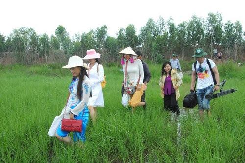 Vườn quốc gia Tràm Chim, chương trình khuyến mãi