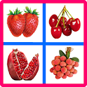 Fruits Memory Game Lite icon