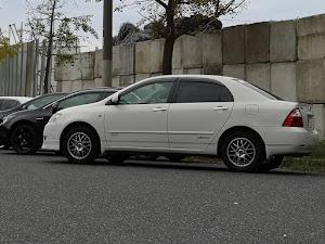 カローラ NZE124 1.5X 4WD  HID 40th アニバーサリーエディションのカスタム事例画像 ごうりきさんの2020年10月06日09:40の投稿