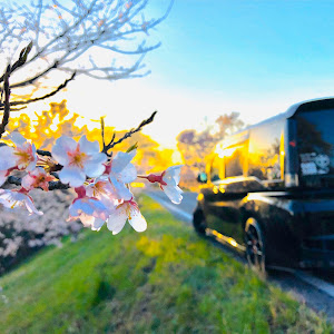 ステップワゴン RP3 SPADA Cool Spiritのカスタム事例画像 今夜が山田さんの2020年03月25日18:20の投稿