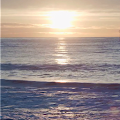 Sunset Ocean Live Wallpaper PRO APK