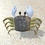 Crabby Run