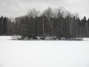 Photo: Пруд на окраине Алмазово