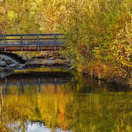 Autumn Sparkles by Patricia Phillips - Landscapes Travel ( alaska lakes tern autumn  reflections )