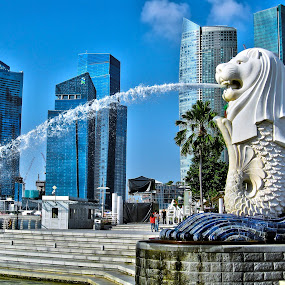 Merlion Park - Singapore by Fabio Ferraro - Travel Locations Landmarks ( statue, park, merlion, merlion park, singapore )