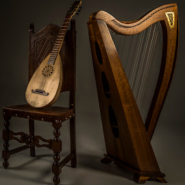 Harp and lute by Angela Higgins - Artistic Objects Musical Instruments