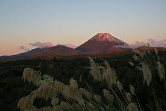 Photo: Ngauruhoe im Abendlicht