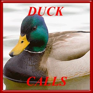 Duck hunting calls