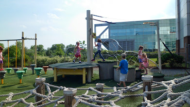 Photo: Obstacle course at the Wildlife Challenge exhibit