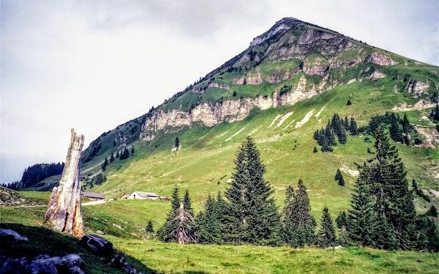 Rotwandhütte mit Juifen