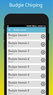 Budgie sounds - Apps on Google Play