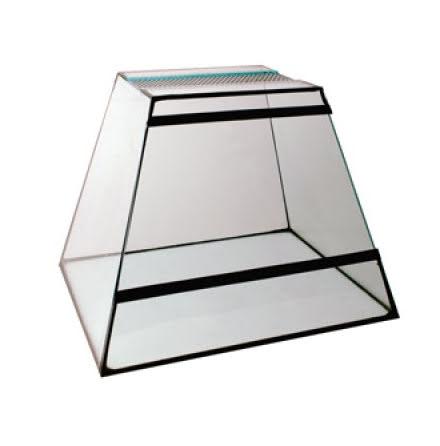 Terrarium Pyramid 27cm Ljusinsläpp Tak