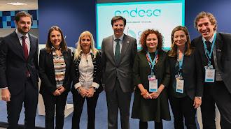 Participantes en la jornada inaugurada por José Cass, diretor general de Relaciones Instiucionales y Regulación de Endesa, en el centro.