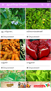 Ayurvedic Herbal Plants Tips - náhled