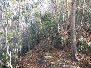 岩が多い道だがよく整備されている