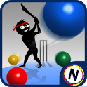 Googly Cricket icon