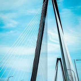 Talmadge Memorial Bridge by Portraits Rhonda - Buildings & Architecture Bridges & Suspended Structures ( savannah, cable, bridge )