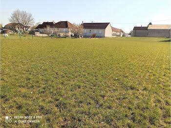 terrain à Villenauxe-la-Petite (77)
