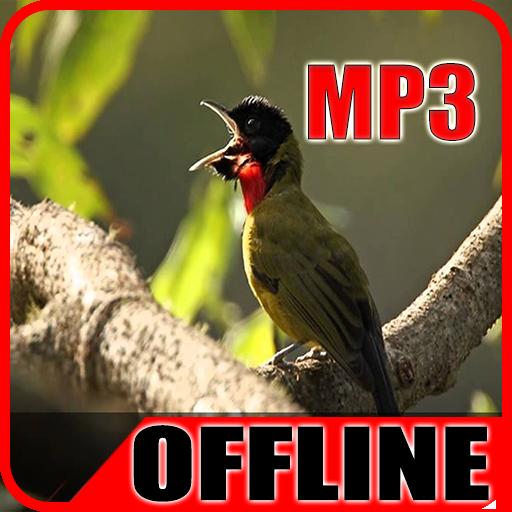 Download Suara Burung Samyong Gacor Offline App Apk App Id Com Suara Kicau Burung Samyong