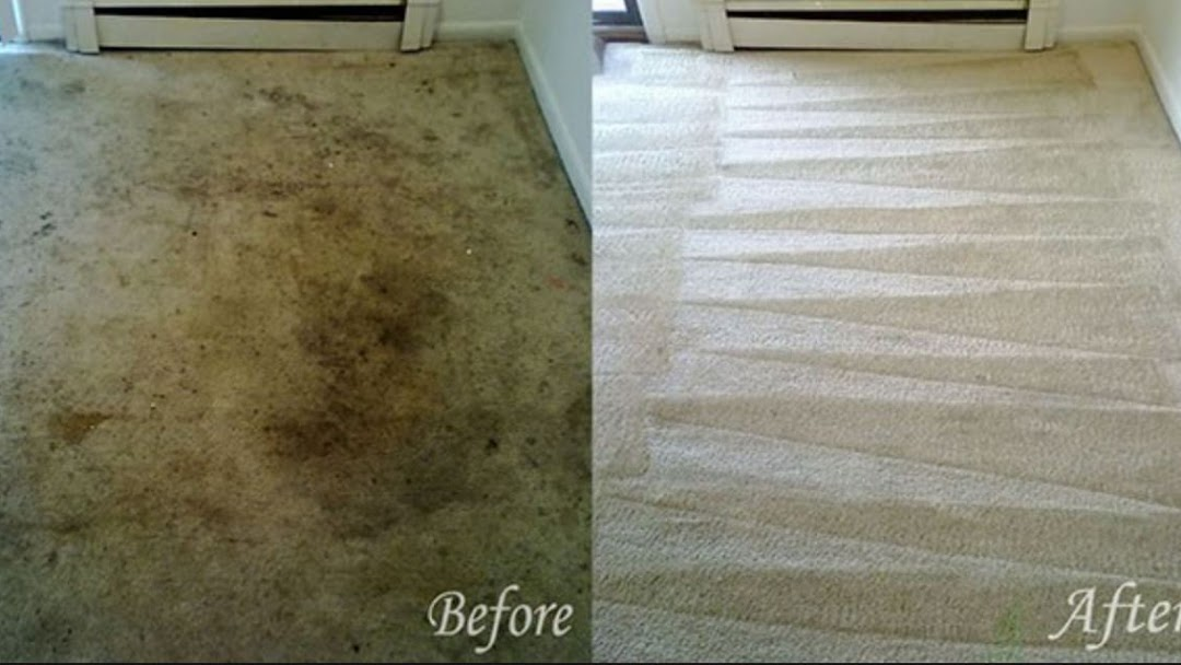 Spring Grove Carpet Cleaning