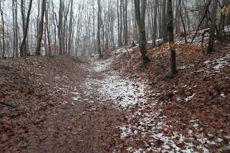 Photo: Pomaly stúpam v Uhrovskému hradu. Objavuje sa prvý sneh