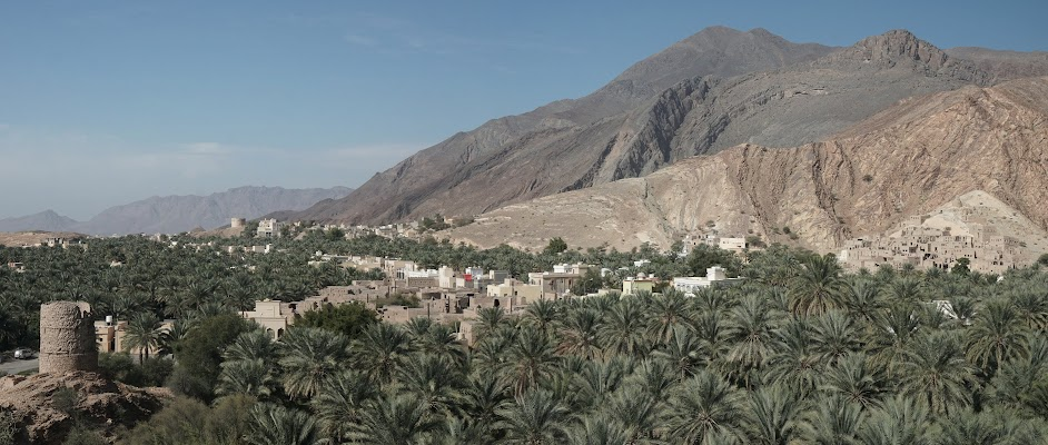 Blick über die Oase Birkat Al Mouz