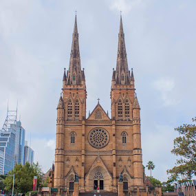 St Mary's cathedral by Daniel Wheeler - Buildings & Architecture Places of Worship ( colour, church, australia, sydney, city,  )