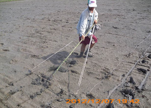 Photo: Marking off a 25x25 cm pattern in the field.