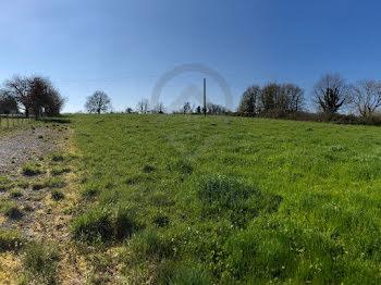 terrain à Saint-Amant-de-Bonnieure (16)