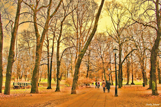 Photo: The Palace Park in Oslo, Norway. The scene before the winter snows.  ノルウェーの王宮公園 雪が降る前の光景