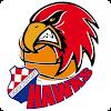 Croatia Hawks APK