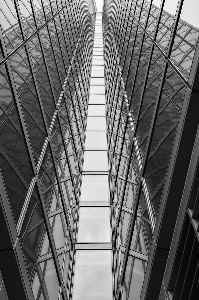 Simmetrie...allo specchio di stefanogaleotti